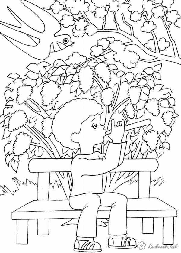 Распечатать дерево раскраска – Раскраска Дерево ...
